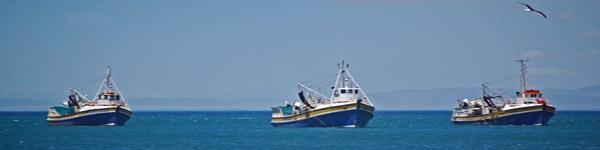 3 fishing boats.jpg