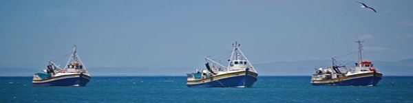 3 fishing boats.jpg